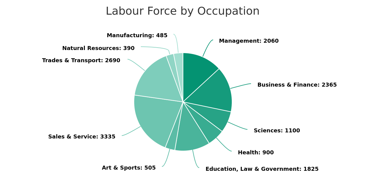 Okotoks labour force by occupation for 2020