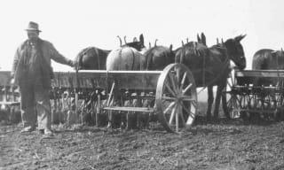 Farming History