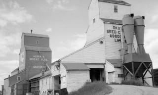 Black and white photo of grain elevators