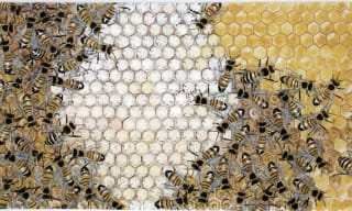 Bees on a honeycomb painting