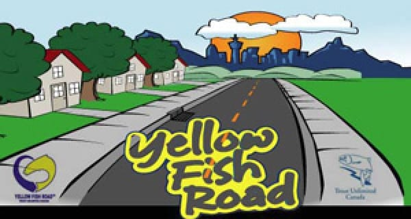 Yellow Fish Road