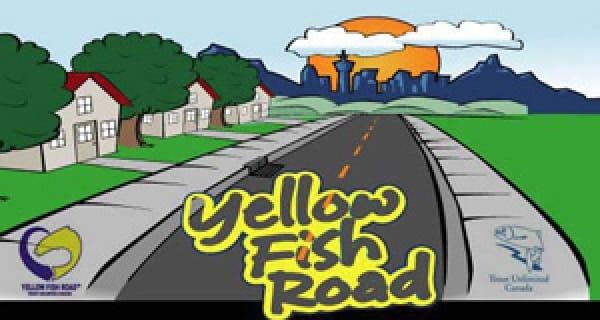 Yellow Fish Road
