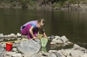 water conservation, water quality