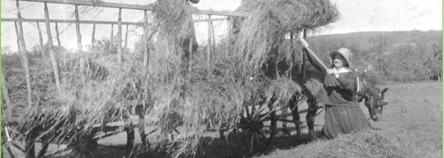 Museum historical women farming