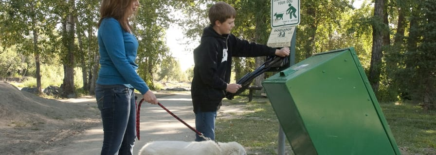 Outdoor Parks Dog On Leash Off Leash Trash Receptacle Pathways