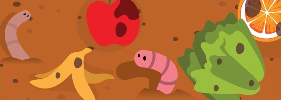 Vermicomposting (worm composting)