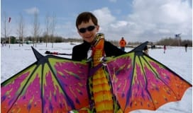 Kite Festival Kids Community Event Calendar Okotoks