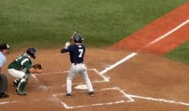 Baseball Field Status Report