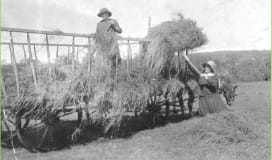 Museum historical women farming
