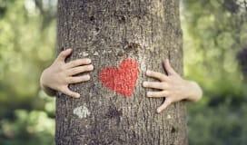Hug a tree - love the environment