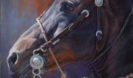 Gallery Equine Painting Michelle Grant